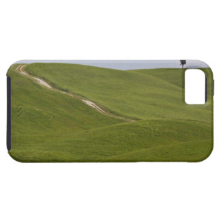 Italy, Tuscany, Val D'Orcia, Landscape 3 iPhone 5 Covers