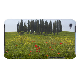 Italy, Tuscany, Val D'Orcia, Landscape Barely There iPod Cases