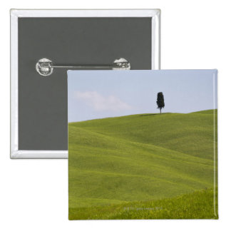 Italy, Tuscany, Val D'Orcia, Lone tree on hill 15 Cm Square Badge