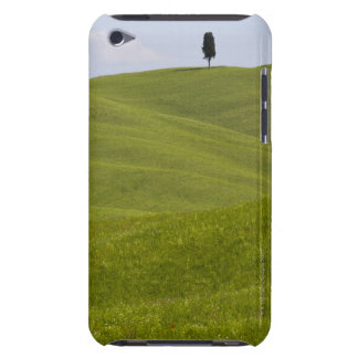 Italy, Tuscany, Val D'Orcia, Lone tree on hill Barely There iPod Case