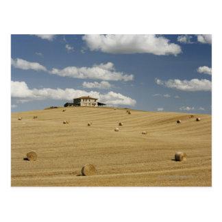 Italy,Tuscany,Val d'Orcia Postcard