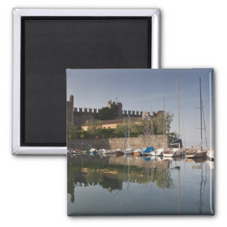 Italy, Verona Province, Torri del Benaco. Il Magnet