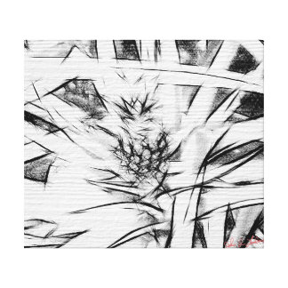 Item 041814 Pineapple Black and White Pencil Study Stretched Canvas Prints
