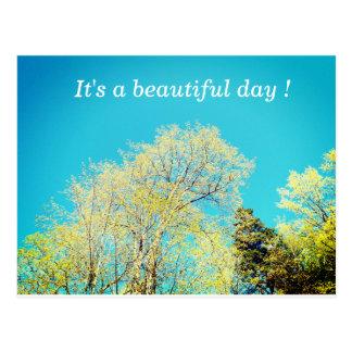 It's a Beautiful Day Postcard