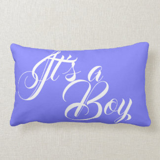 It's a Boy Blue Solids Lumbar & Throw Pillows