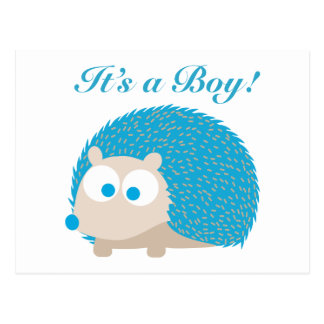 It's a Boy! Hedgehog Postcard