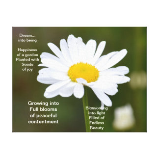 It's a Daisy Stretched Canvas Print