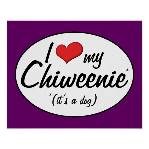 It's a Dog! I Love My Chiweenie Poster