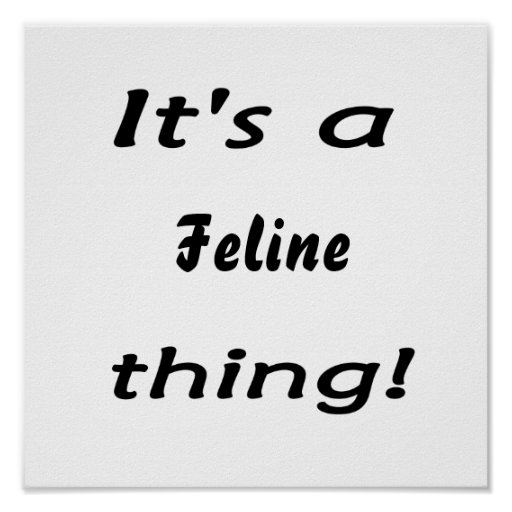 It's a Feline thing! Poster