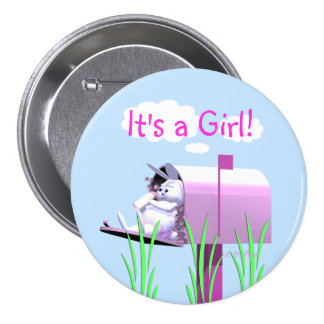 Its a Girl - Baby Bunny in Mailbox Pinback Button