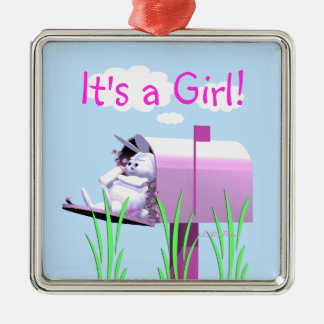 Its a Girl - Baby Bunny in Mailbox Silver-Colored Square Decoration
