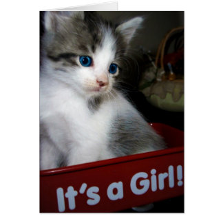 ITS A GIRL =^o^= Card