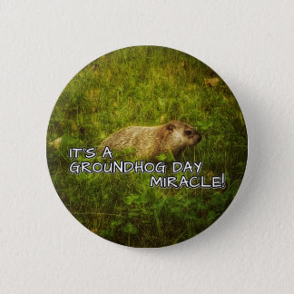 It's a groundhog day miracle! button