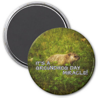 It's a groundhog day miracle magnet