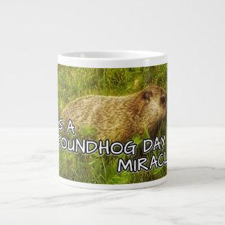 It's a groundhog day miracle! mug