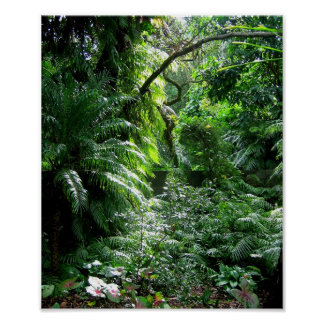 It's a jungle out there..... poster
