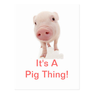 It's A Pig Thing Postcard