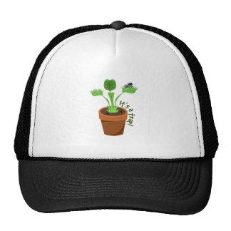It's A Trap Hat