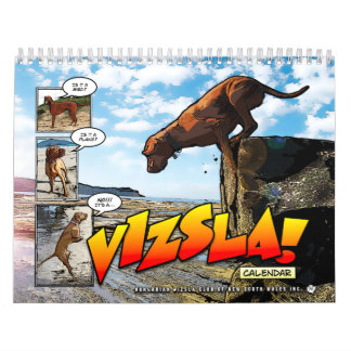 It's a Vizsla! 2015 Calendar