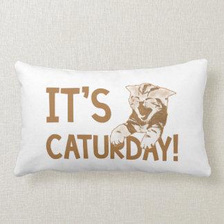 It's Caturday! 2 Lumbar Cushion