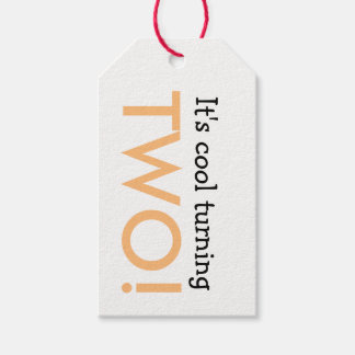 It's Cool Turning Two Kid's Birthday Gift Tag