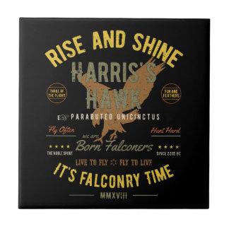 It's Falconry Time! Harris's Hawk Ceramic Tile