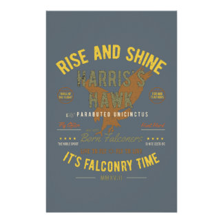 It's Falconry Time! Harris's Hawk Stationery