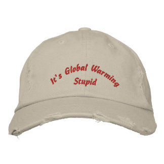 Its Global Warming Stupid Embroidered Hat
