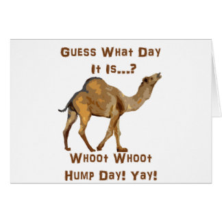 Its Hump Day Greeting Card