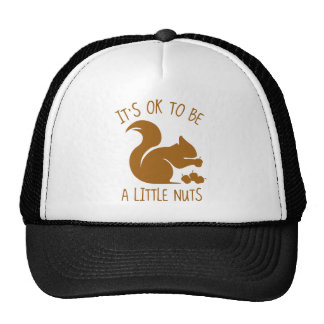 It's OK To Be A Little Nuts Cap