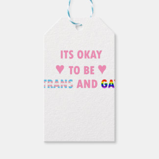 It's Okay To Be Trans And Gay (v1) Gift Tags
