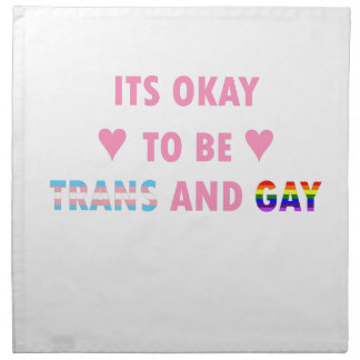 It's Okay To Be Trans And Gay (v1) Napkin