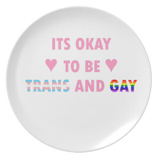 It's Okay To Be Trans And Gay (v1) Plate