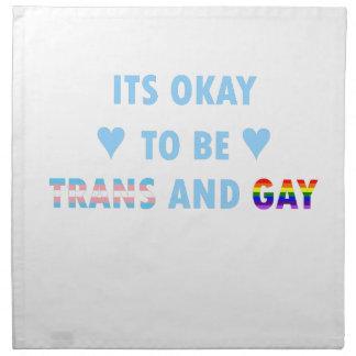 It's Okay To Be Trans And Gay (v2) Napkin