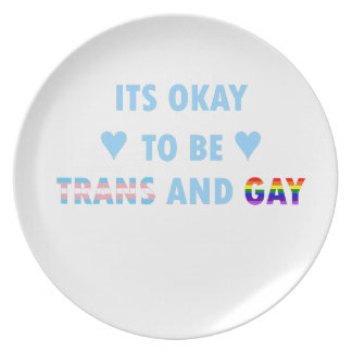 It's Okay To Be Trans And Gay (v2) Plate