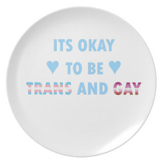 It's Okay To Be Trans And Gay (v3) Plate