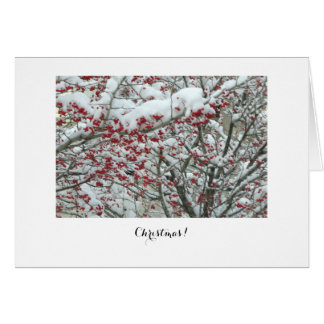 Its the berries greeting card