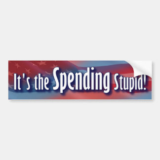 It's the Spending Stupid! Bumper Sticker