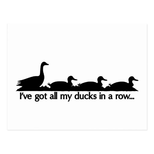 I've got all my ducks in a row... post card