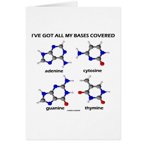 I've Got My Bases Covered (Chemistry DNA Bases) Greeting Cards