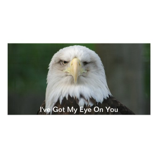 I've Got My Eye On You, One-Eyed Eagle Postcard Picture Card