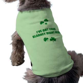 I'VE GOT YOUR BLARNEY RIGHT HERE SHIRT