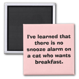 I've learned that there is no snooze alarm on a... square magnet