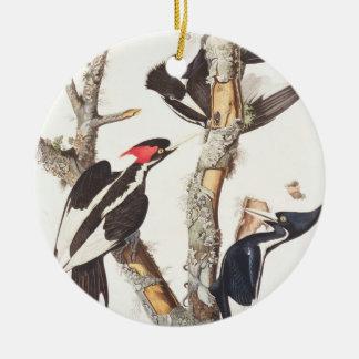 Ivory-billed Woodpecker 1829 print Christmas Ornament