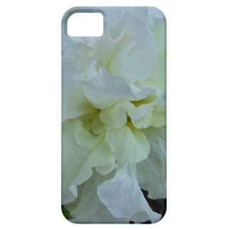 Ivory Carnival iPhone 5 Case