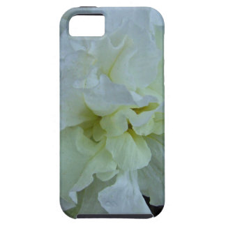 Ivory Carnival iPhone 5 Covers