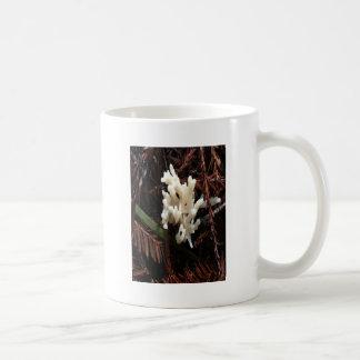 Ivory Coral Fungus Coffee Mug
