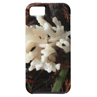 Ivory Coral Fungus iPhone 5 Cover