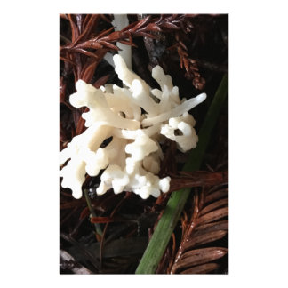 Ivory Coral Fungus Stationery