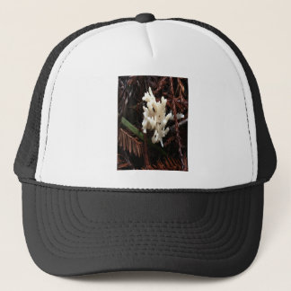 Ivory Coral Fungus Trucker Hat